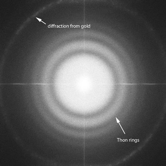 An image showing the full frame transfer (FFT) of a nominally magnified image at 100,000x magnification.