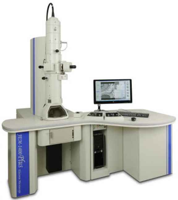 The JEOL JEM 1400plus microscope available through the Electron Microscopy Center (EMC).